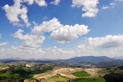 campo andaluz